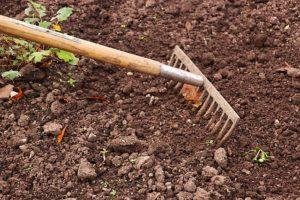gärtner und landschaftspfleger als unterstützung im garten