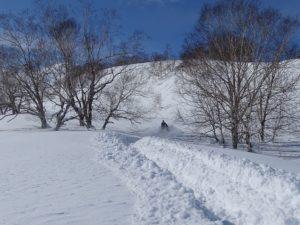 schneeräumen und winterdienst macht ihre arbeit