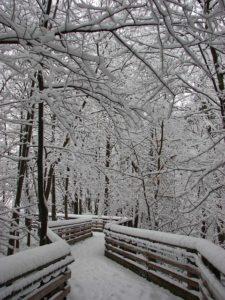 schneeräumen und winterdienst schützt vor glätte