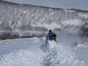 Winterdienst und Schneeräumen in Olbersdorf